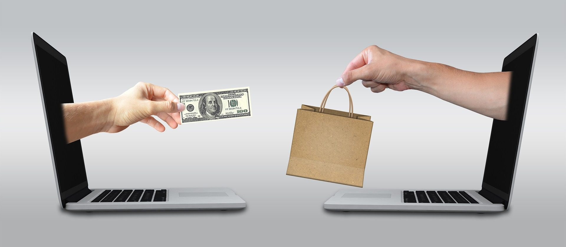 Hands with money and shopping bag coming out of two laptops